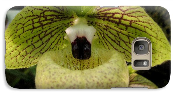 Galaxy Case featuring the photograph Chinese Ladyslipper Orchid by Alfred Ng