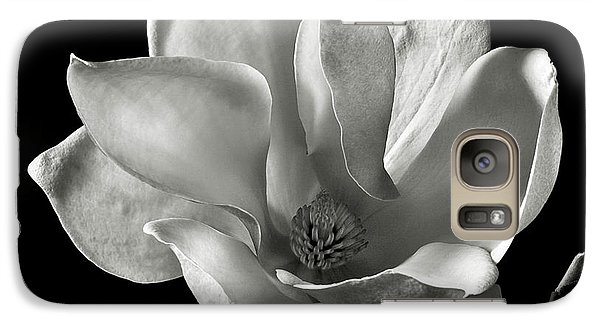 Galaxy Case featuring the photograph Chinese Magnolia by Endre Balogh