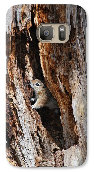 Galaxy Case featuring the photograph Chipmunk - Eager Arizona by Donna Greene