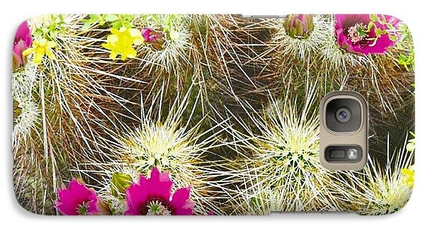 Cholla Cactus Blooms Galaxy S7 Case