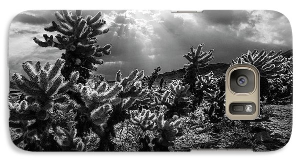 Galaxy Case featuring the photograph Cholla Cactus Garden Bathed In Sunlight In Black And White by Randall Nyhof