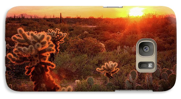 Galaxy Case featuring the photograph Cholla Sunset In The Sonoran  by Saija Lehtonen