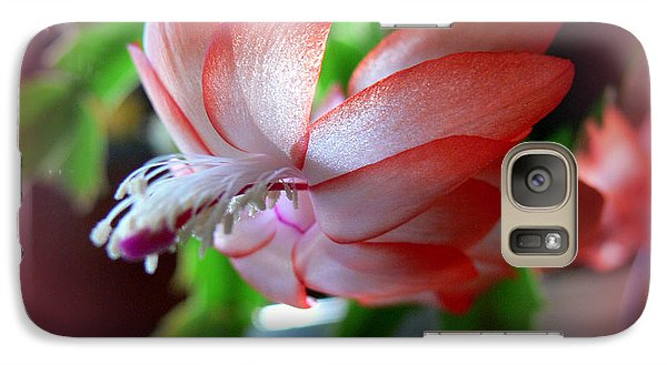 Galaxy Case featuring the photograph Christmas Cactus by EricaMaxine  Price