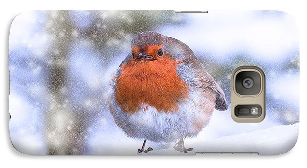 Galaxy Case featuring the photograph Christmas Robin by Scott Carruthers