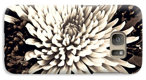 Galaxy Case featuring the photograph Chrysanthemum In Sepia 2  by Sarah Loft