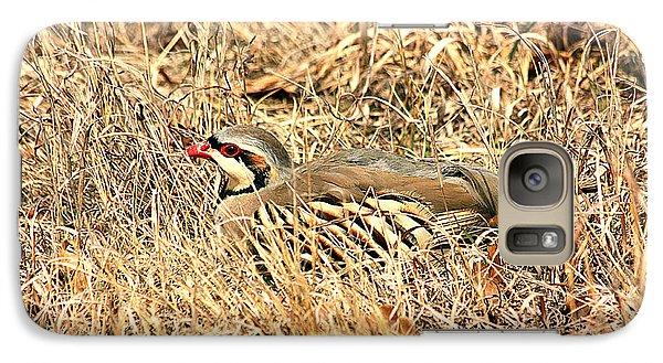 Galaxy Case featuring the photograph Chuckar Bird Hiding In Grass by Sheila Brown