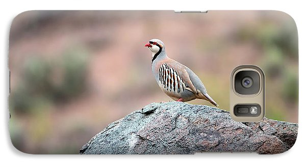 Galaxy Case featuring the photograph Chukar Partridge 2 by Leland D Howard