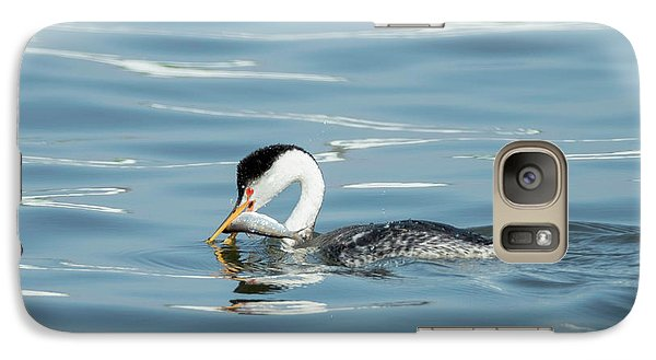 Galaxy Case featuring the photograph Clarks Grebe by Everet Regal