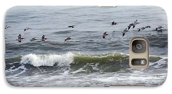 Classic Brown Pelicans Galaxy S7 Case by Betsy Knapp
