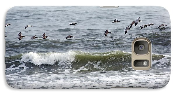 Classic Brown Pelicans Galaxy Case by Betsy Knapp