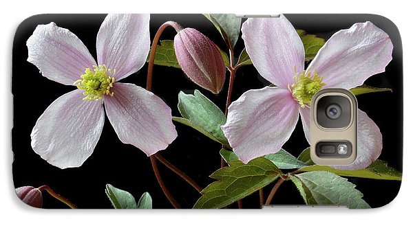 Galaxy Case featuring the photograph Clematis Montana Rubens by Terence Davis