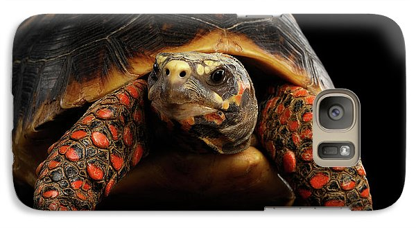 Close-up Of Red-footed Tortoises, Chelonoidis Carbonaria, Isolated Black Background Galaxy S7 Case by Sergey Taran