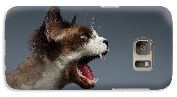 Cat Galaxy S7 Case - Closeup Devon Rex Hisses In Profile View On Gray  by Sergey Taran