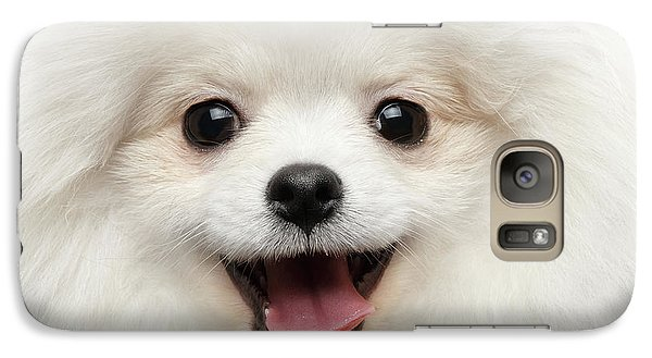 Dog Galaxy S7 Case - Closeup Furry Happiness White Pomeranian Spitz Dog Curious Smiling by Sergey Taran