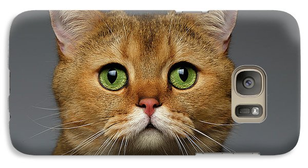 Closeup Golden British Cat With  Green Eyes On Gray Galaxy Case by Sergey Taran