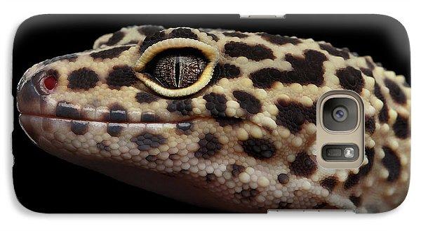 Closeup Head Of Leopard Gecko Eublepharis Macularius Isolated On Black Background Galaxy S7 Case by Sergey Taran