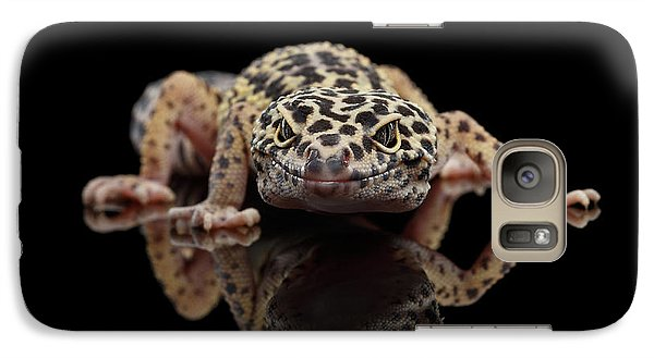 Closeup Leopard Gecko Eublepharis Macularius Isolated On Black Background, Front View Galaxy S7 Case by Sergey Taran