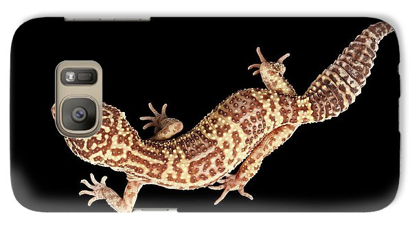 Closeup Leopard Gecko Eublepharis Macularius Isolated On Black Background Galaxy S7 Case by Sergey Taran