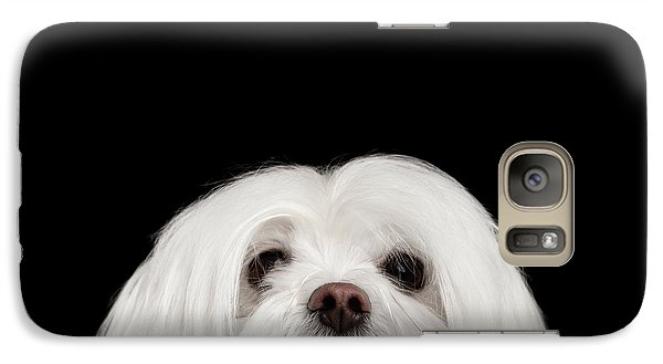 Closeup Nosey White Maltese Dog Looking In Camera Isolated On Black Background Galaxy S7 Case