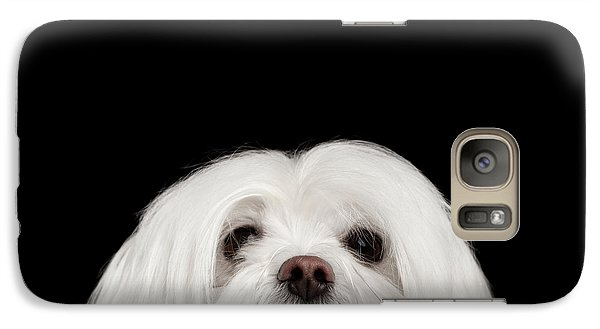 Dog Galaxy S7 Case - Closeup Nosey White Maltese Dog Looking In Camera Isolated On Black Background by Sergey Taran