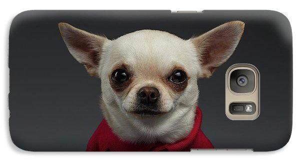 Closeup Portrait Chihuahua Dog In Stylish Clothes. Gray Background Galaxy S7 Case