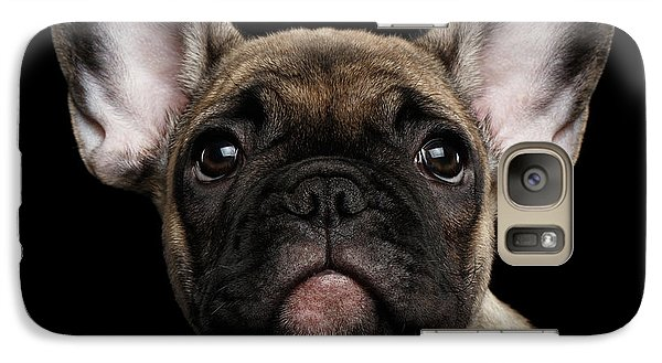 Closeup Portrait French Bulldog Puppy, Cute Looking In Camera Galaxy S7 Case