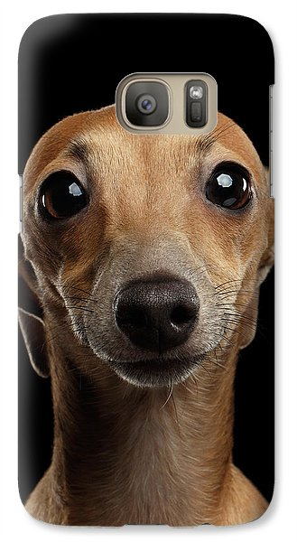 Closeup Portrait Italian Greyhound Dog Looking In Camera Isolated Black Galaxy S7 Case