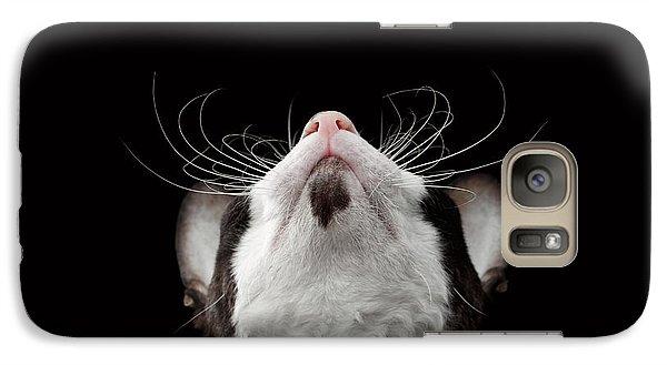 Cat Galaxy S7 Case - Closeup Portrait Of Cornish Rex Looking Up Isolated On Black  by Sergey Taran