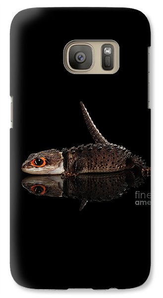 Closeup Red-eyed Crocodile Skink, Tribolonotus Gracilis, Isolated On Black Background Galaxy S7 Case by Sergey Taran