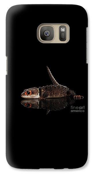 Closeup Red-eyed Crocodile Skink, Tribolonotus Gracilis, Isolated On Black Background Galaxy S7 Case by Sergey Taran
