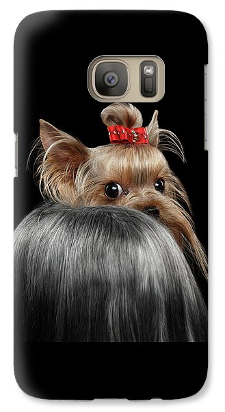 Dog Galaxy S7 Case -  Closeup Yorkshire Terrier Dog, Long Groomed Hair Pity Looking Back by Sergey Taran