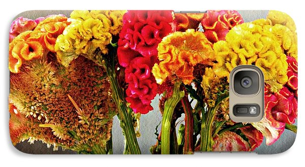 Galaxy Case featuring the photograph Cockscomb Bouquet 3 by Sarah Loft