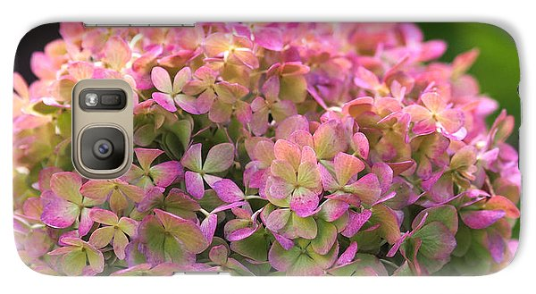 Galaxy Case featuring the photograph Color-changing Little Lime Hydrangea by Rona Black