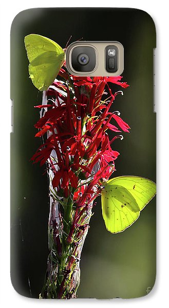 Galaxy Case featuring the photograph Color On Citico by Douglas Stucky
