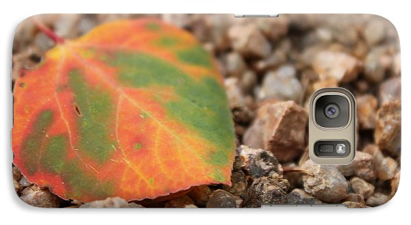 Galaxy Case featuring the photograph Colorado Fall Colors by Christin Brodie