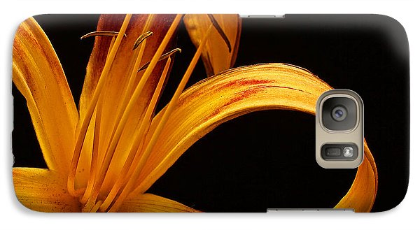 Galaxy Case featuring the photograph Colorful Curls by Judy Vincent