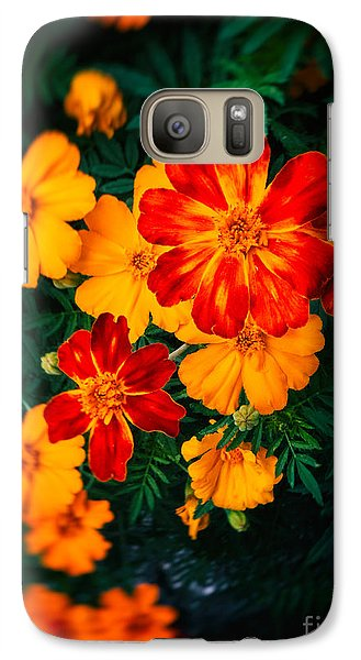 Galaxy Case featuring the photograph Colorful Flowers by Silvia Ganora