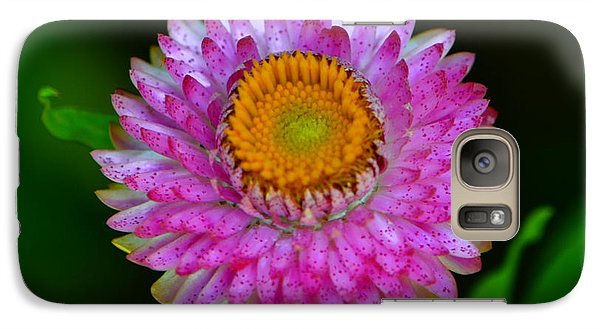 Galaxy Case featuring the photograph Colors Of Nature - Grand Opening 001 by George Bostian