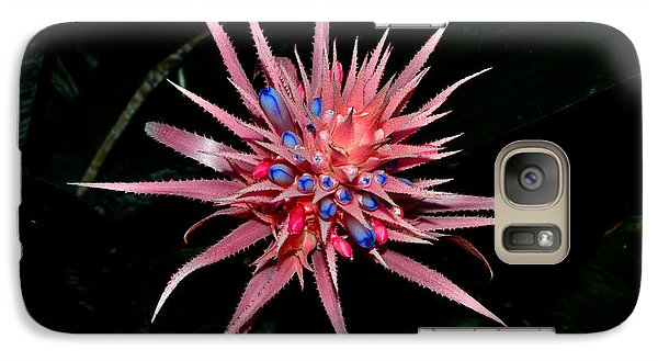 Galaxy Case featuring the photograph Colors Of Nature - Pink And Blue Bromelia by George Bostian