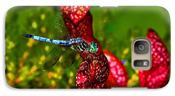 Galaxy Case featuring the photograph Colors Of Nature - Profile Of A Dragonfly 003 by George Bostian