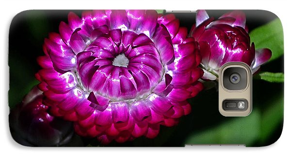 Galaxy Case featuring the photograph Colors Of Nature - Strawflower 005 by George Bostian
