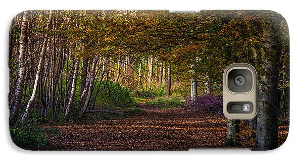 Galaxy Case featuring the photograph Comfort In These Woods by Odd Jeppesen
