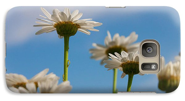 Galaxy Case featuring the photograph Coming Up Daisies by Christina Lihani