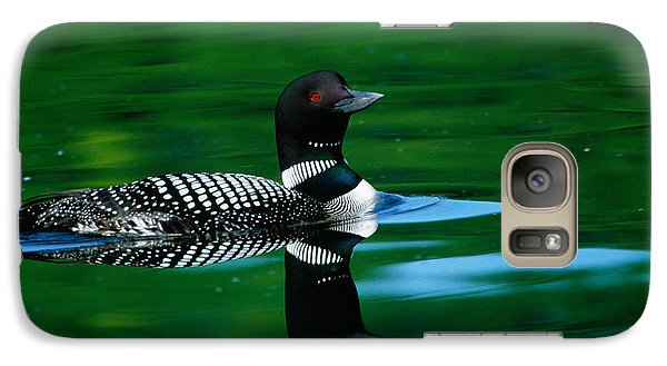 Common Loon In Water, Michigan, Usa Galaxy S7 Case by Panoramic Images