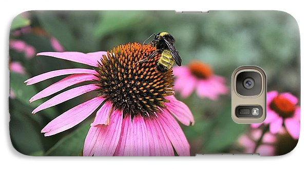 Galaxy Case featuring the photograph Cone Flowers And Bee by Sheila Brown