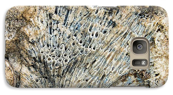 Galaxy Case featuring the photograph Coral Fossil by Jean Noren