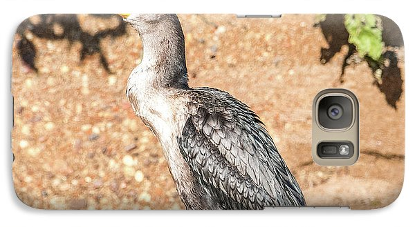 Galaxy Case featuring the photograph Cormorant On Shore by Paul Freidlund
