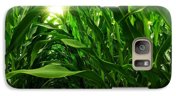 Corn Field Galaxy S7 Case by Carlos Caetano