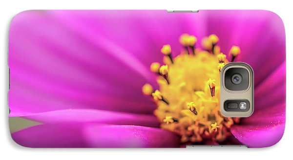 Galaxy Case featuring the photograph Cosmos Pink Sensation by Sharon Mau