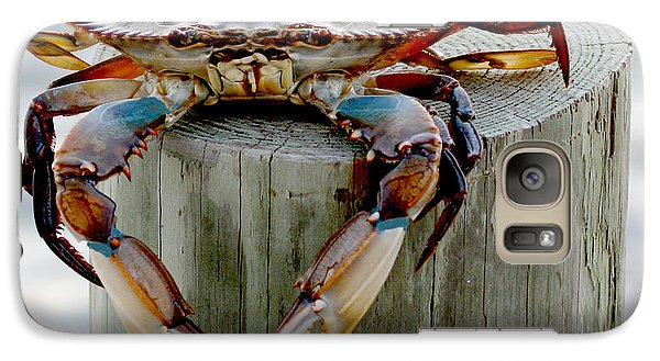 Galaxy Case featuring the photograph Crab Hanging Out by Luana K Perez